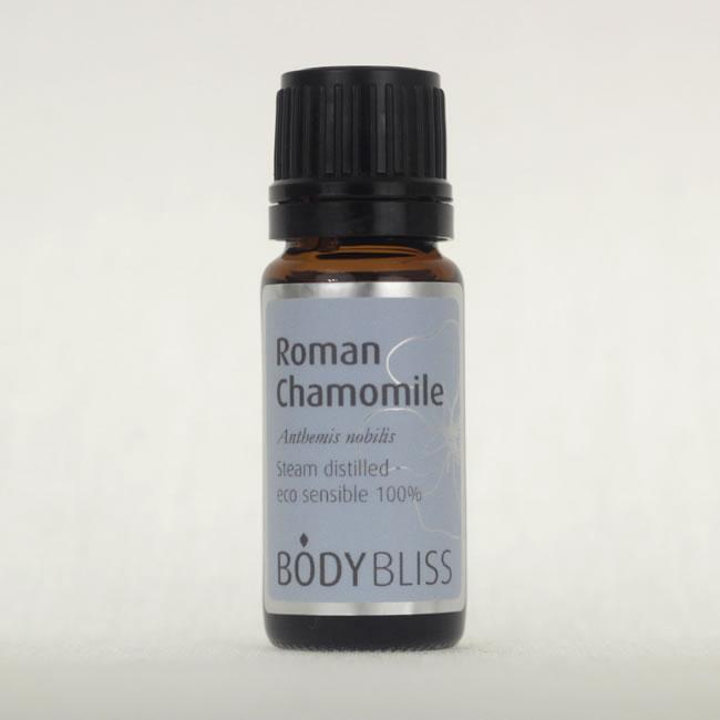 Roman Camomile